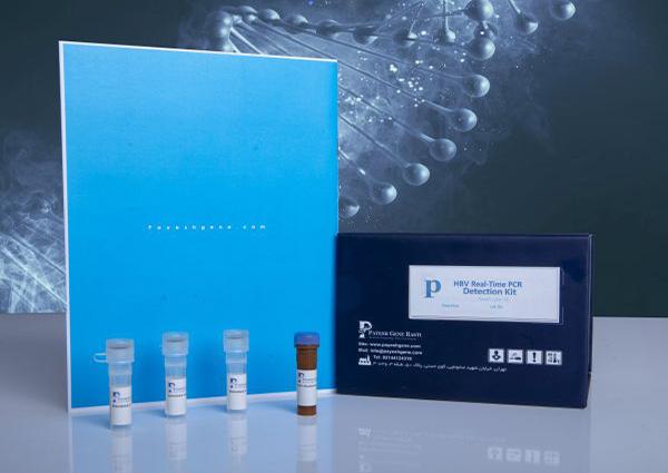 Real-Time PCR Detection Kit